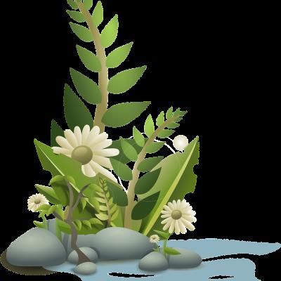 Mantenimiento de jardines en Cantabria I Conservación de zonas verdes en Cantabria - Telymca